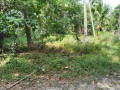 land-for-sale-in-negombo-small-0