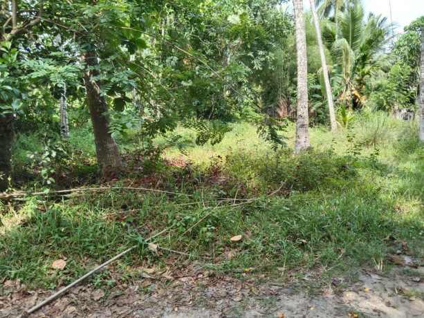 land-for-sale-in-negombo-big-0