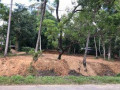 land-for-sale-in-ampara-small-0