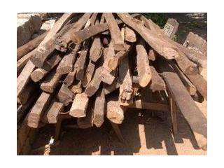 Coconut Construction Woods
