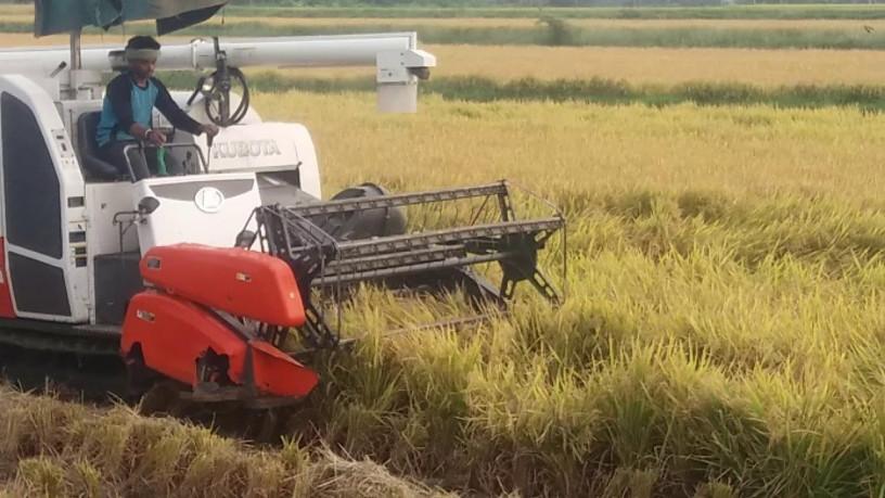 kubota-harvester-68g-big-0