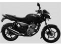 bajaj-pulsar-135-pulser-bike-2015-small-0