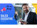 sales-executive-small-0