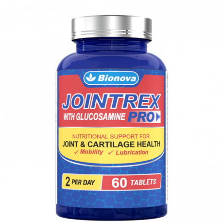 vegetarian-glucosamine-nutrition-for-healthy-joints-big-0
