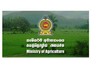 Need A Job For A Agriculture Graduate Girl From Gampaha/ Colombo Area - Offered