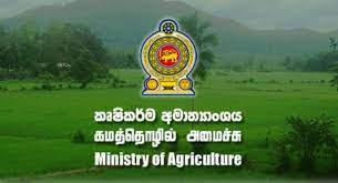 need-a-job-for-a-agriculture-graduate-girl-from-gampaha-colombo-area-offered-big-0