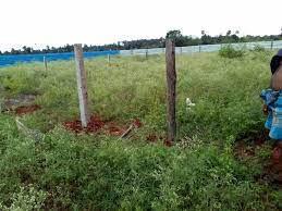 land-for-sale-in-vavuniya-uyilakkulam-for-sale-big-1