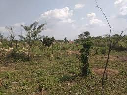 land-for-sale-in-vavuniya-uyilakkulam-for-sale-big-0