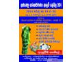 handloom-textile-trade-fair-2014-for-sale-small-0