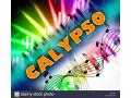 calypso-band-small-0