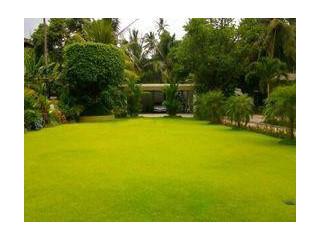Landscaping & Maintenance