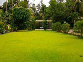 landscaping-maintenance-big-0