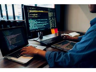 Web Developer.