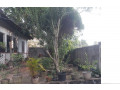 20p-land-and-house-for-sale-small-0