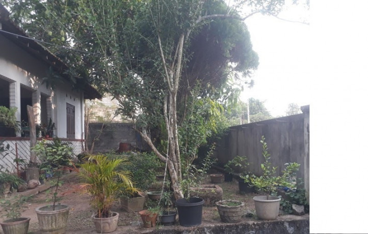 20p-land-and-house-for-sale-big-0
