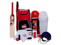 cricket-set-small-0