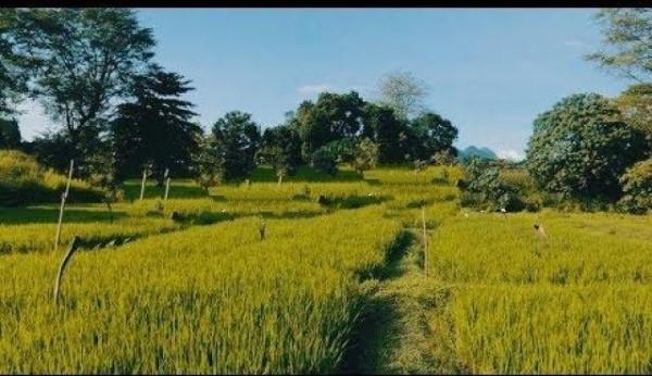land-for-sale-in-rambukkana-big-0