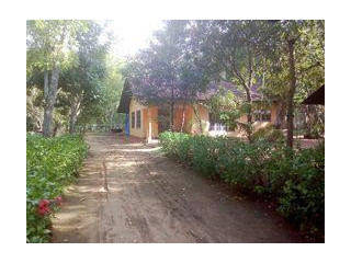 Land with House for sale in Polonnaruwa