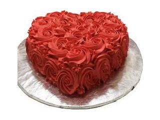 Surprising Trinco cake Delivery