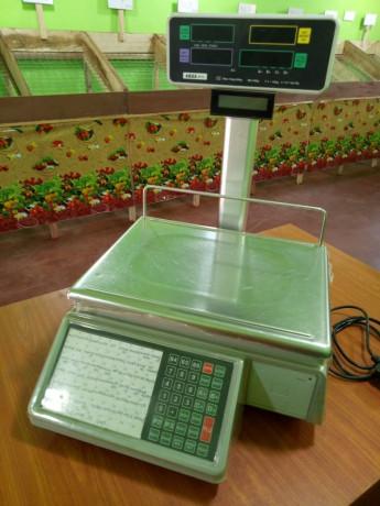 electronic-billing-scale-big-0
